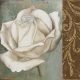 Rose II Prints by Patricia Quintero-Pinto