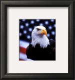 Courage: Eagle and Flag Prints