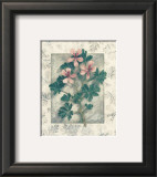 Pelargonium Prints by Julie Nightingale