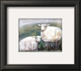 Sheep Prints by Silvana Crefcoeur