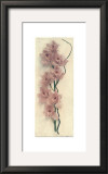 Orchid with Branch Posters by Julie Nightingale