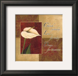Calla Lily, Cherish Live Dream Posters by Maria Girardi