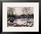White Birches Print by Diane Romanello