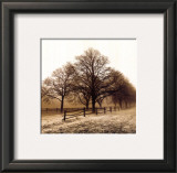 Row of Trees Prints by Harold Silverman