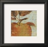 Joli Fruit I Prints by  Philippa