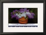 Lilacs Of Nantucket Prints by Robert Duff