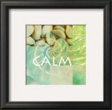 Reflections: Calm Prints by Jessica Vonammon