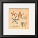Starfish Print by Stephanie Marrott