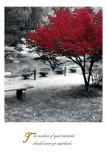 Quiet Moments Prints
