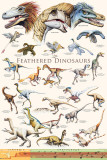 Feathered Dinosaurs II Print