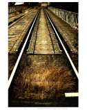The Tracks of My Tears Prints by Graham Rhodes