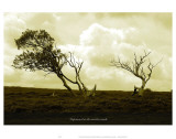 Imprisioned in the Viewless Winds Prints by Graham Rhodes