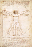 Human Proportions - Vitruvius Man Posters by Leonardo Da Vinci