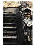 Follow Me and Climb the Stairs Prints by Graham Rhodes