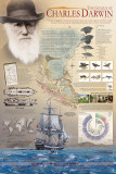 The Genius of Charles Darwin, Giclee Print