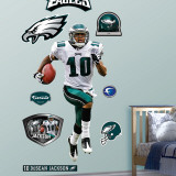 DeSean Jackson Wall Decal