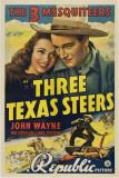 Three Texas Steers Masterprint