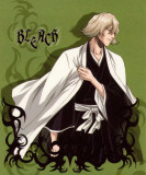 Bleach - Japanese Style Green Masterprint