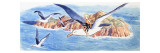 Ride on a Seagull, Illustration from 'The Water Babies' by Charles Kingsley, 1965 Giclee Print by  Mendoza
