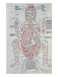 The Anatomy of the Pregnant Woman, Illustration from &#39;Fasciculus Medicinae&#39; by Johannes De Ketham Giclee Print by Italian School 