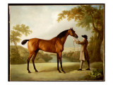 Tristram Shandy, a Bay Racehorse Held by a Groom in an Extensive Landscape, C.1760 Giclee Print by George Stubbs