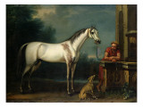 "Lord Oxford's ""Bloody-Shouldered Arabian"" Held by a Groom in Arabian Dress Giclee Print by John Wootton"