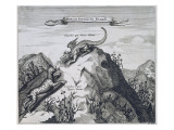 A Mountain in the Jiangxi Province with Crags known as the Dragon and the Tiger Giclee Print by  Dutch School