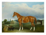 A Chestnut Hunter and a Spaniel by Farm Buildings Giclee Print by John E. Ferneley