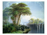 Buffalos Driven to the Edge of the Chasm Opposite Garden Island, Victoria Falls Premium Giclee Print by Thomas Baines