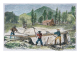 Prospectors Using a Sluice During the California Gold Rush of 1849 Giclee Print by  American School