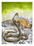King Cobra Meets His Match, from 'Nature's Kingdom' Giclee Print by Susan Cartwright