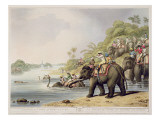 "Chasing a Tiger across a River, from ""Oriental Field Sports"", Pub. by Edward Orme, 1807 Giclee Print by Samuel Howett"