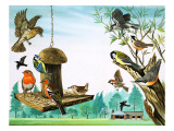 All Sorts of Birds around the Garden Table, Illustration from &#39;Once Upon a Time&#39;, 1971 Giclee Print by Pratt 