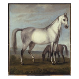 A Grey Mare and a Foal in an Extensive Hilly Landscape Giclee Print by Peter Tillemans