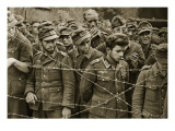 German Soldiers Captured after the Fighting at Mortain and Falaise, 1944 Giclee Print by  English Photographer