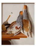 Trompe L&#39;Oeil of Two Partridges Hanging from a Nail Giclee Print by Cornelis Biltius
