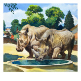 Ben and Friend, from 'Who's Who at the Zoo' Giclee Print by G. W Backhouse
