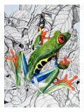 The Flying Frog, from 'Nature's Kingdom' Giclee Print by Susan Cartwright