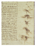 Scientific Diagrams, from the 'Codex Leicester', 1508-12 Giclee Print by  Leonardo da Vinci