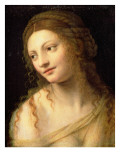 Head and Shoulders of a Young Woman Giclee Print by Bernardino Luini