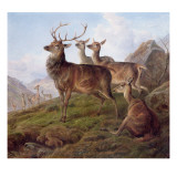 Red Deer in a Highland Landscape, 1872 Giclee Print by Charles Jones