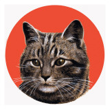 Tabby Cat, from 'Treasure', 1966 Giclee Print by R. B. Davis