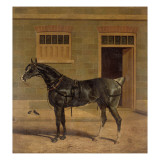 A Carriage Horse in a Stable Yard Giclee Print by John Frederick Herring I
