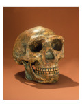 Peking Man&#39;s Reconstructed Skull, Cave Choukou&#39;Tien Giclee Print by Chinese School 