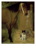 At the Stable, Horse and Dog, C.1862 Premium Giclee Print by Edgar Degas