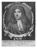 Portrait of Anton Van Leeuwenhoek Giclee Print by Jan Verkolje