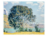 A View of Lake Brienz from Bodeli Gicleetryck av Ferdinand Hodler