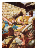 Mycenaean Warriors Fighting Impresso gicle por Richard Hook