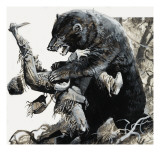 Hugh Glass Being Savaged by a Bear, 1978 Giclee Print by Severino Baraldi