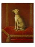 One of Frederick Ii's Italian Greyhounds Giclée-tryk af  German School